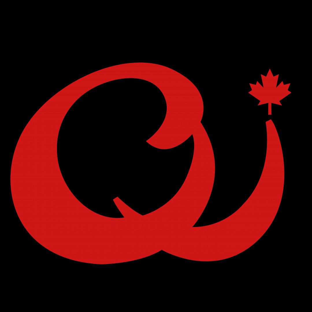 齐家集团-logo